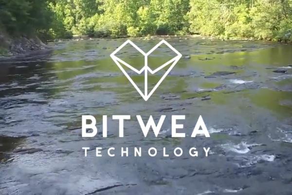Bitwea (2)